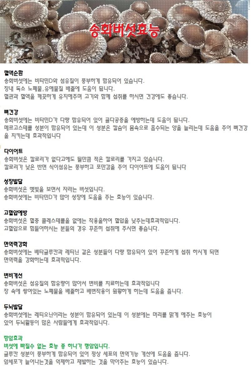 송화버섯효능.jpg
